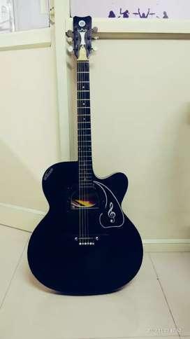 Guitar - indian made