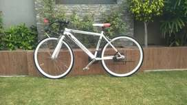 Imported bicycle whole sale