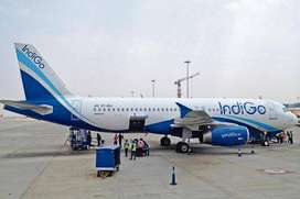 Direct hiring in indigo airlines . ground staff. Luggage Dept. , Front