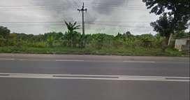 Dijual Tanah Pinggir Jalan Raya Propinsi Dekat Gerbang Tol Cikampek
