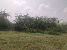 Good Developing area Plot for Immediate sale