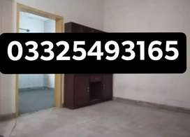 [G11 real picture pha e type ground floor flat for sale]