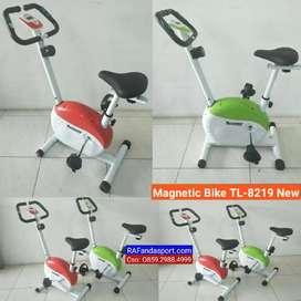 Sepeda Statis Magnetik Bike TL-8219