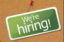 marketing or delivery jobs available