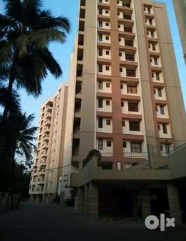 1 bhk 850 sqft  fully furnished laxuary flatt at aluva airport road