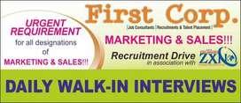 Marketing / Sales