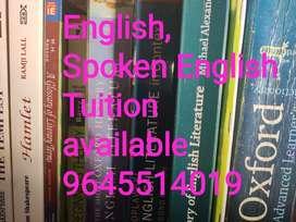 Experienced English teacher available