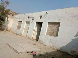 14 marla house good condition  only on 21 lakh