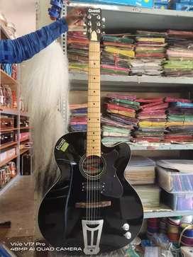 Accostic guitar Givson company