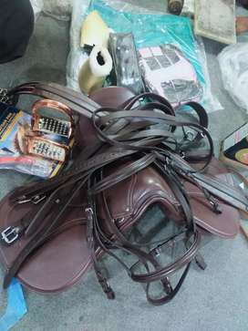 Horse saddle set