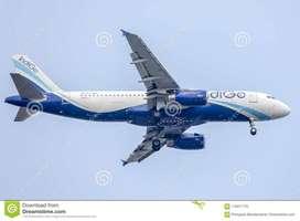 Indigo airlines hiring for ground staff passport Checker ticketing exe