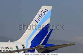 Airlines Hiring for staff vacancy for full time job  We have multiple