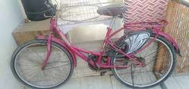 BSA lady bird cycle forgirl one of the best cycle for girl.