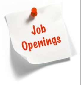 Urgent hiring in Airport for freshers