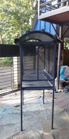 Iron birds cage