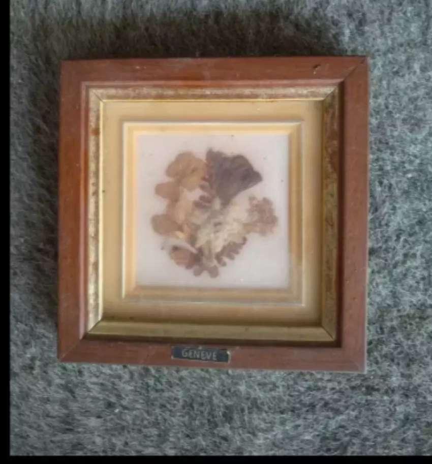 Lukisan ornamen eldeweiss naturali Dari genere