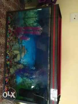 Fish Aquarium Tanks starting price 1000