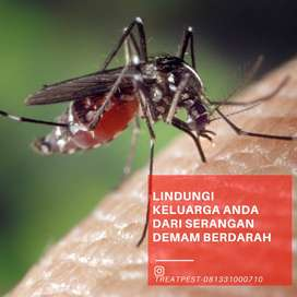Jasa fogging nyamuk demam berdarah malaria professional