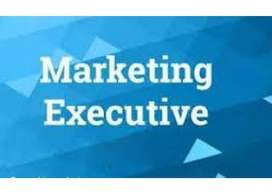 Wanted Marketing Executives On Commission basis for Real estate