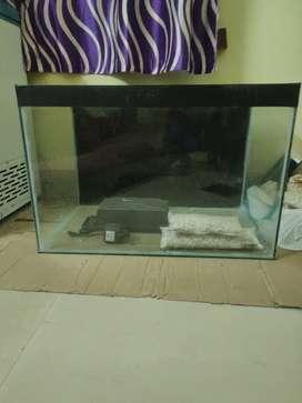 I want to sale my aquarium