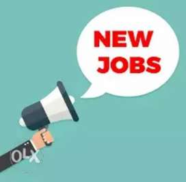 Need data entry operator for office