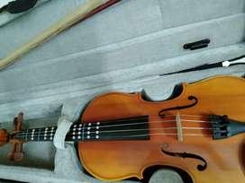 Violin mint