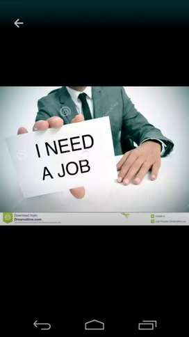 need staff for office work