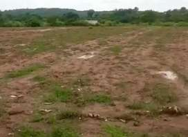 4 Kanal Only land for Rent cattle, dairy sheds goat etc Bahria Enclave