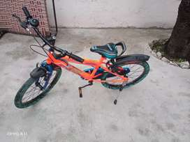 Bicycle avon