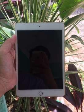 Ipad Mini 4 Wifi Only