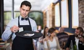 Need 100 Waiters
