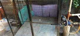 Dog house steel