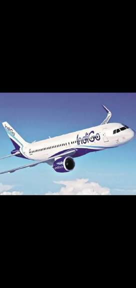 Indigo hiring male and female candidates