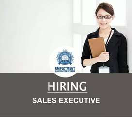 SALES EXECUTIVE ( FEMALE)