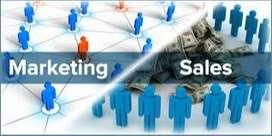 Field Sales Executive jobs - Urgent