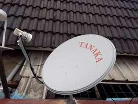 Antena parabola mini nex parabola gratis tanpa iuran bulanan