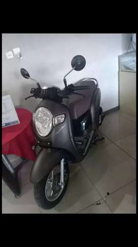 Honda Scoopy Stylish 2019