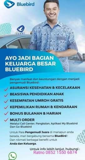 Lowongan Pengemudi Taksi Blue Bird Pool Radin Inten