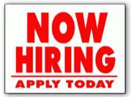 we are Hiring, +2 Pass Out Male/Females In B.P.O. Or Ltd companies In