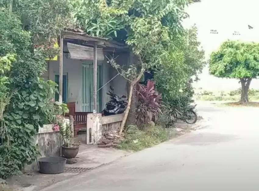 Tanah + Rumah Mangku Jalan Aspal Kampung 0