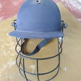 Cricket healmeat