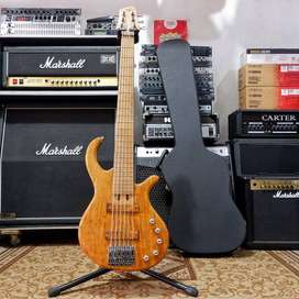 Bass ELRICK cstm 6 Strings Active with Hardcase