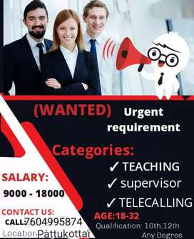 Teaching,Telecalling,Supervisor