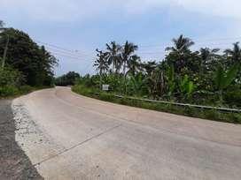 Jual Tanah Di Pinggir Jalan Propinsi