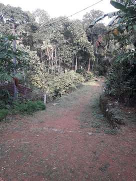 Plot for sale in near karukachal 2 lakhs per cent