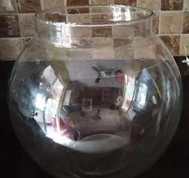 Medium aquarium jar