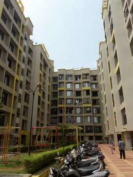 1BHK Lavish Flat in Evershine City