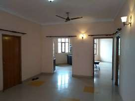 Flatt 2Room independent Vasant Vihar full fredom