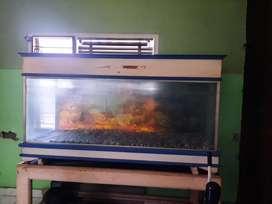Aquarium/ Akuarium Kaca + Dudukan (ex Ikan Arwana)