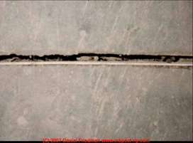 EXPANSION  JOINT  REPAIR ( Building )